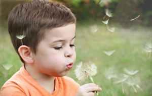 boy wearing orange shirt blowing on dandelion