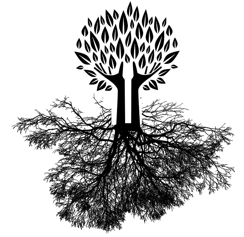 tree-whole.png
