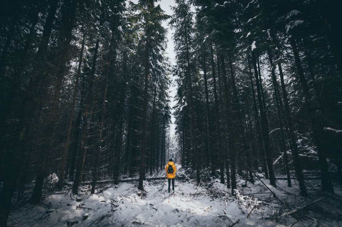 man in yellow jacket in frozen forest
